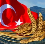 О порядке ввоза российского зерна и продуктов его переработки в Египет и Турцию