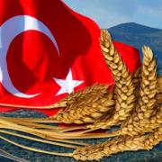 О порядке ввоза российского зерна и продуктов его переработки в Турецкую Республику
